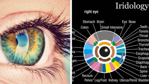Here's What Your Iris Can Reveal About Your Health