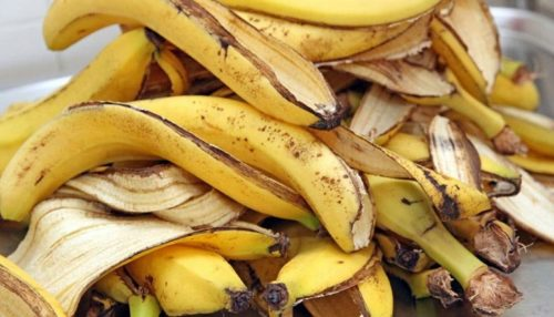 How To Use Banana Peels To Lose Weight