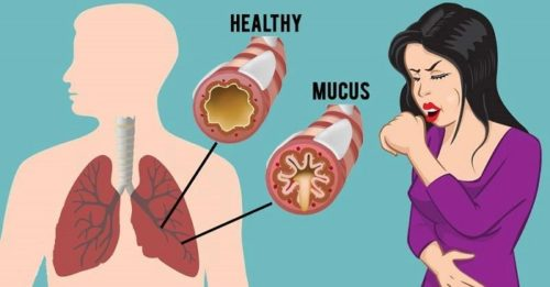 How To Cleanse Your Chest From Phlegm And Mucus As Fast As Possible