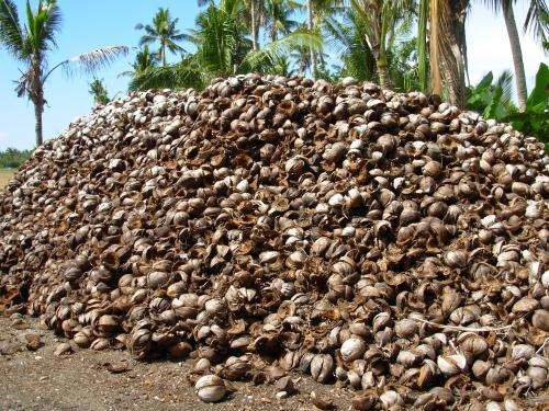Coconut Husks Can Be Used Instead Of Wood And Prevent Cutting Trees Down