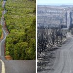 Before And After Photos Of The Devastated Areas Of Australia