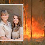 """Wildlife Warriors"" Helps Over 90 000 Animals As Fires Rage In Australia"